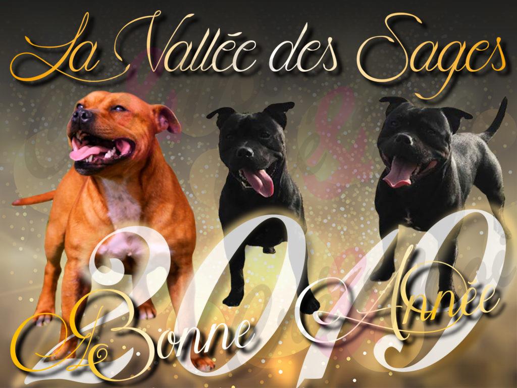 VOEUX 2019 LA VALLEE DES SAGES